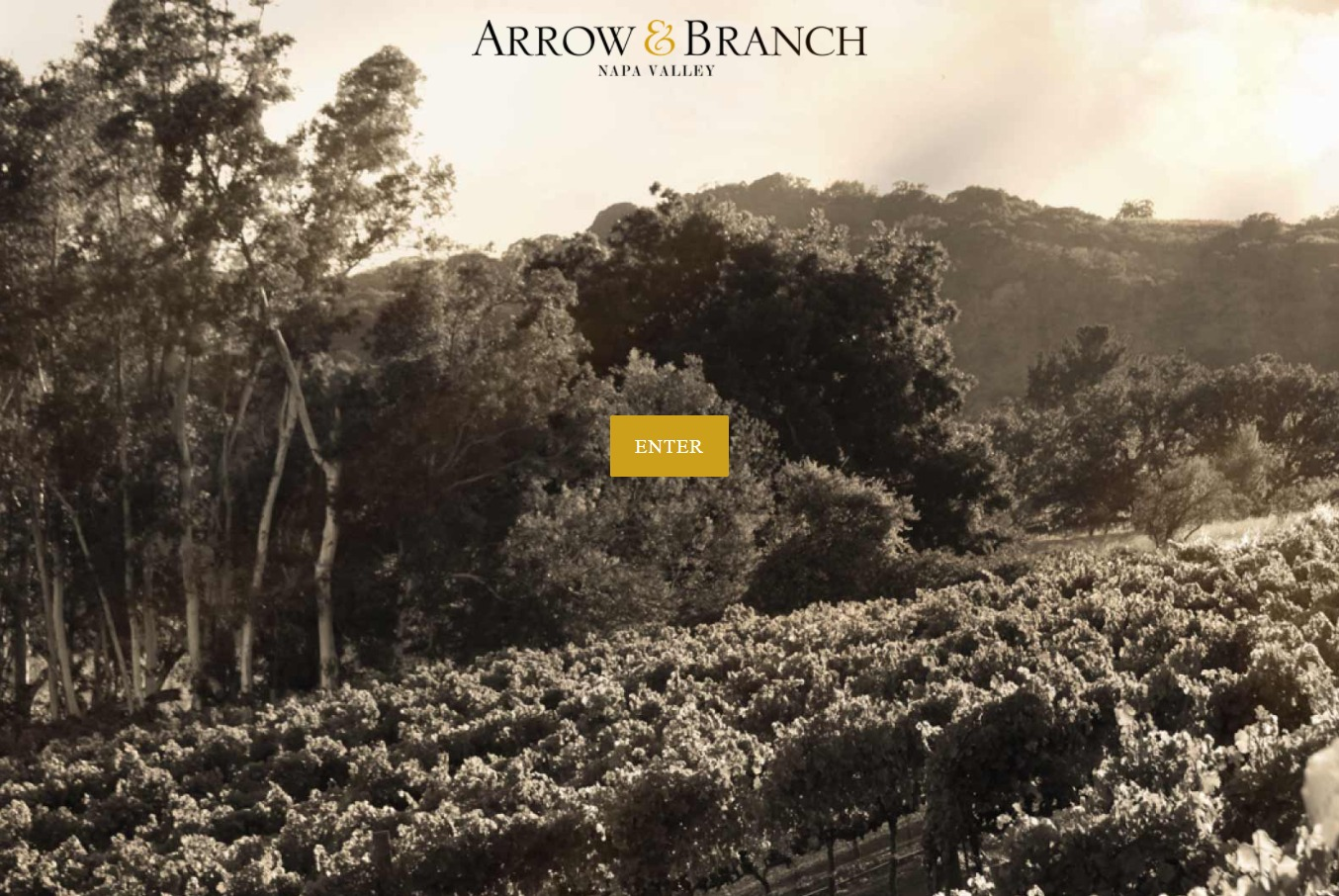 Image of arrowandbranch.com